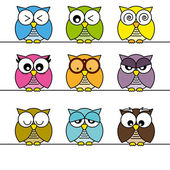 Owls icons — Stock Vector
