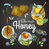 Sweet honey — Stock Vector