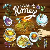 Sweet honey — Stock Vector