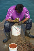 Fisherman at work — Stock Photo