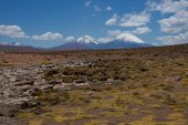 Volcanoes on the Altiplano — Stockfoto