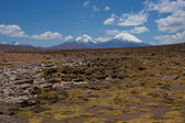 Volcanoes on the Altiplano — Stock fotografie