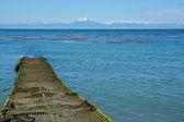 Island of Chiloe — Stock Photo