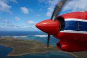 Falkland Islands — Stock Photo