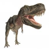 Tarbosaurus — Stock Photo