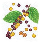 Dye fig — Wektor stockowy