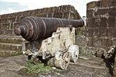 Gamla kanonen — Stockfoto