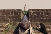 Vintage cannon — Foto de Stock