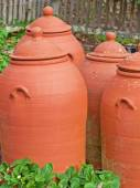Clay forcing pots — Stock Photo