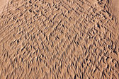 Patterned Sand — Stock Photo