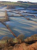 Сельский пейзаж с утренним морозом 1 — Стоковое фото