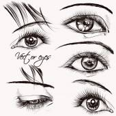 Collection of  beautiful vector hand drawn female eyes for desig — Stock Vector