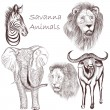 Collection of vector hand drawn savanna animals for design — Stock Vector #56506541