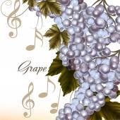 Vector grape on white — Stock Vector