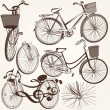 Collection of vector hand drawn bicycles for design — Stock Vector #58584613