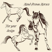 Collection of vector hand drawn horses — Stock Vector