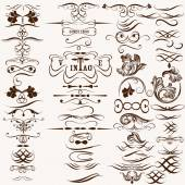Collection of vintage decorative calligraphic flourishes — Stock Vector