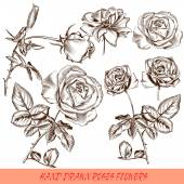 Collection of vector engraved roses in antique style — Stock Vector