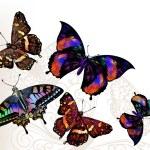векторный фон бабочки — Cтоковый вектор #66722203
