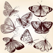 Collection of vector hand drawn butterflies for design — Stock Vector