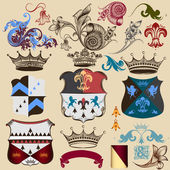 Collection of heraldic decorative elements — Stock Vector