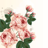 Fashion vector background with roses in vintage style — Stock Vector