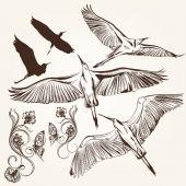Set of vector hand drawn birds and swirls — Vector de stock