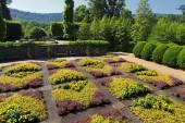 North Carolina Arboretum — Stock Photo