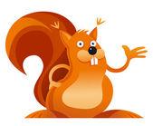 Squirrel — Stock Vector