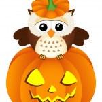 Owl in halloween pumpkin — Stock Vector #53130473