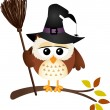 Halloween owl with witch broom — Stock Vector #54324497