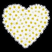 White heart shaped daisy flower — Stock Vector