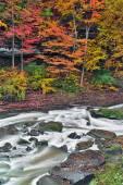 Autumn Rapids — Stock Photo