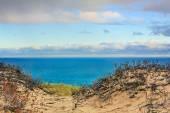 Grand Sable Dunes and Lake Superior — Stock Photo
