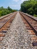 Twin Tracks — Stock Photo