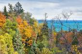 Autumn Forest and Lake Superior — Stock Photo