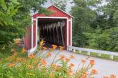 Roadside Lilies and Covered Bridge — Stock Photo