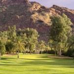 Desert golf course, Phoenix,Az,USA — Stock Photo #67119741