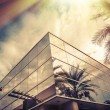 Modern office building with palm tree reflecting in glass — Stock Photo #78234644