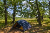 Touristic tent in a forest — Stock Photo