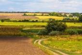 Autumn rural scene — Stock Photo