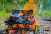 Closeup cooking fire — Stok fotoğraf