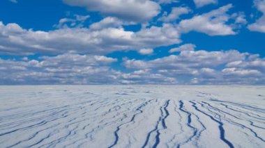 Winter snowbound field — Stock Video
