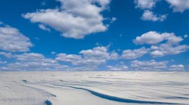 Winter snowbound plain scene — Wideo stockowe