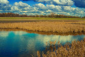 Lake in a steppe — Foto Stock