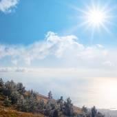 Mountain forest above a sea — Zdjęcie stockowe