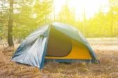 Namiot turystyczne na leśnej polanie — Zdjęcie stockowe