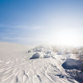 Winter snowbound plain — Stock Photo
