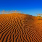 Hot sand desert scene — Fotografia Stock  #65146813