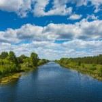 Beautiful summer river — Stock Photo #74583291